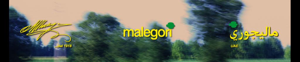 RIDURRE LA SPESA PER LA TELEFONIA AZIENDALE DI MALEGORI